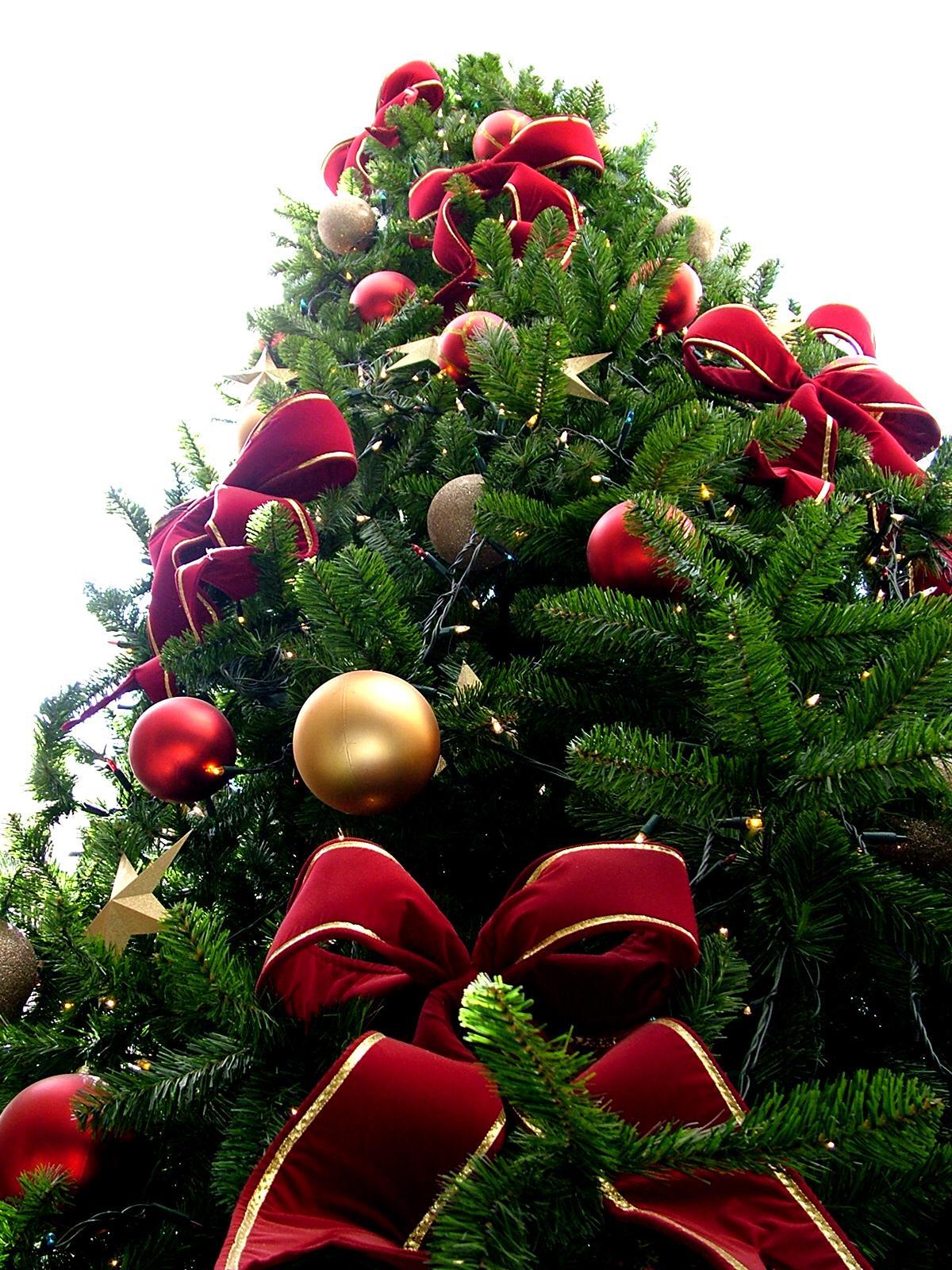 Addobbo natalizio foto