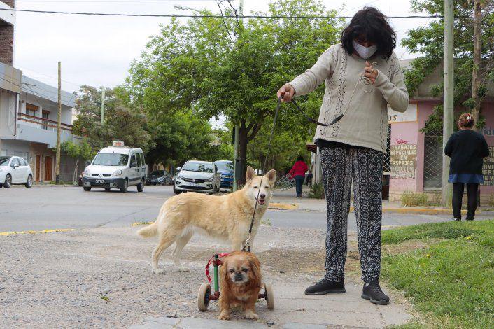 Isabel e il cane Toto