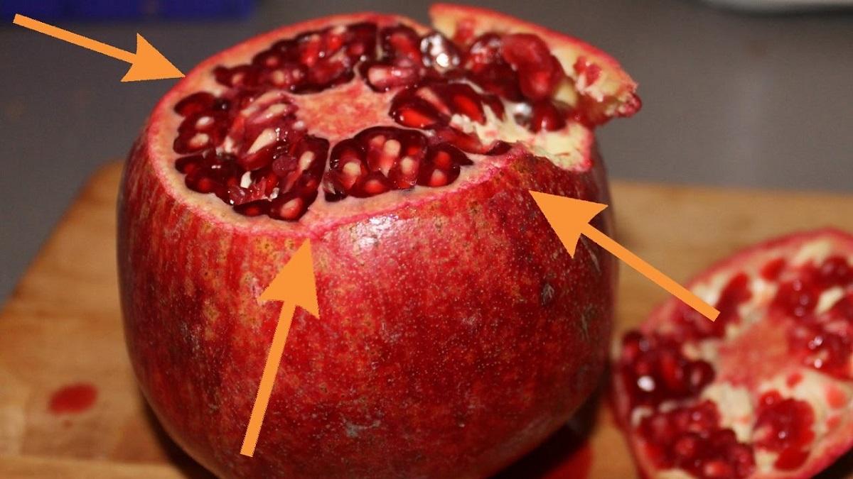 frutto autunnale