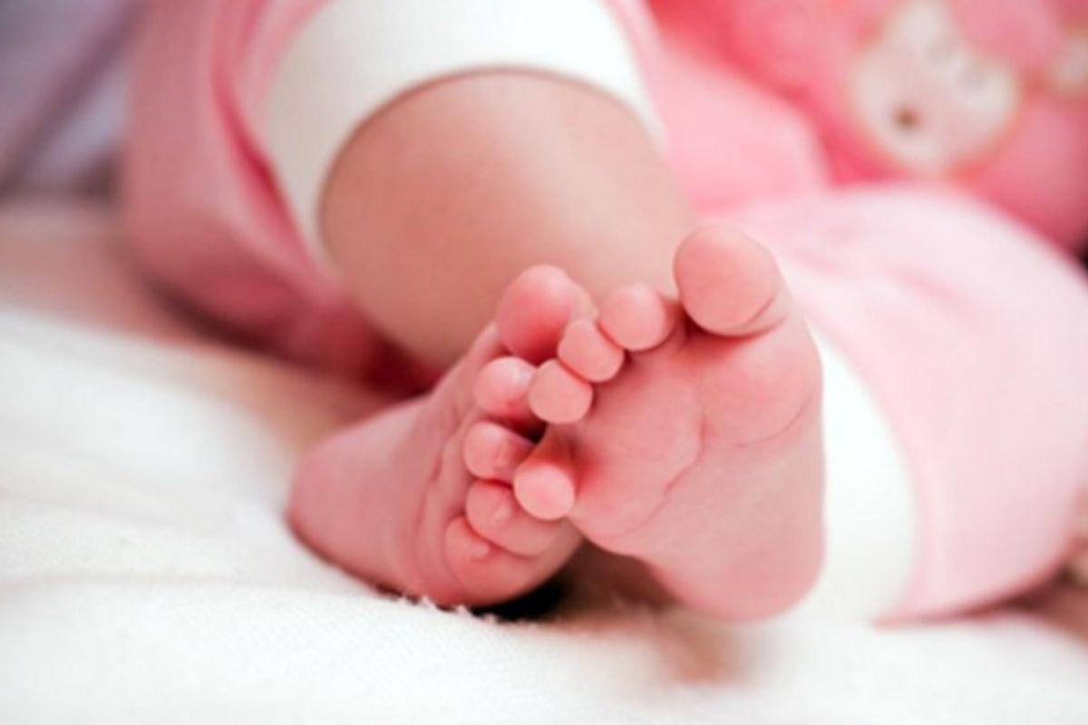 neonata abbandonata guarita