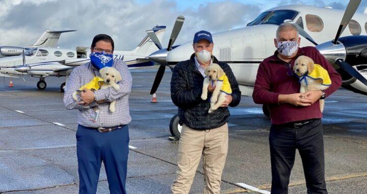 Tre piloti  si offrono volontari per portare i cani guida a persone con disabilità