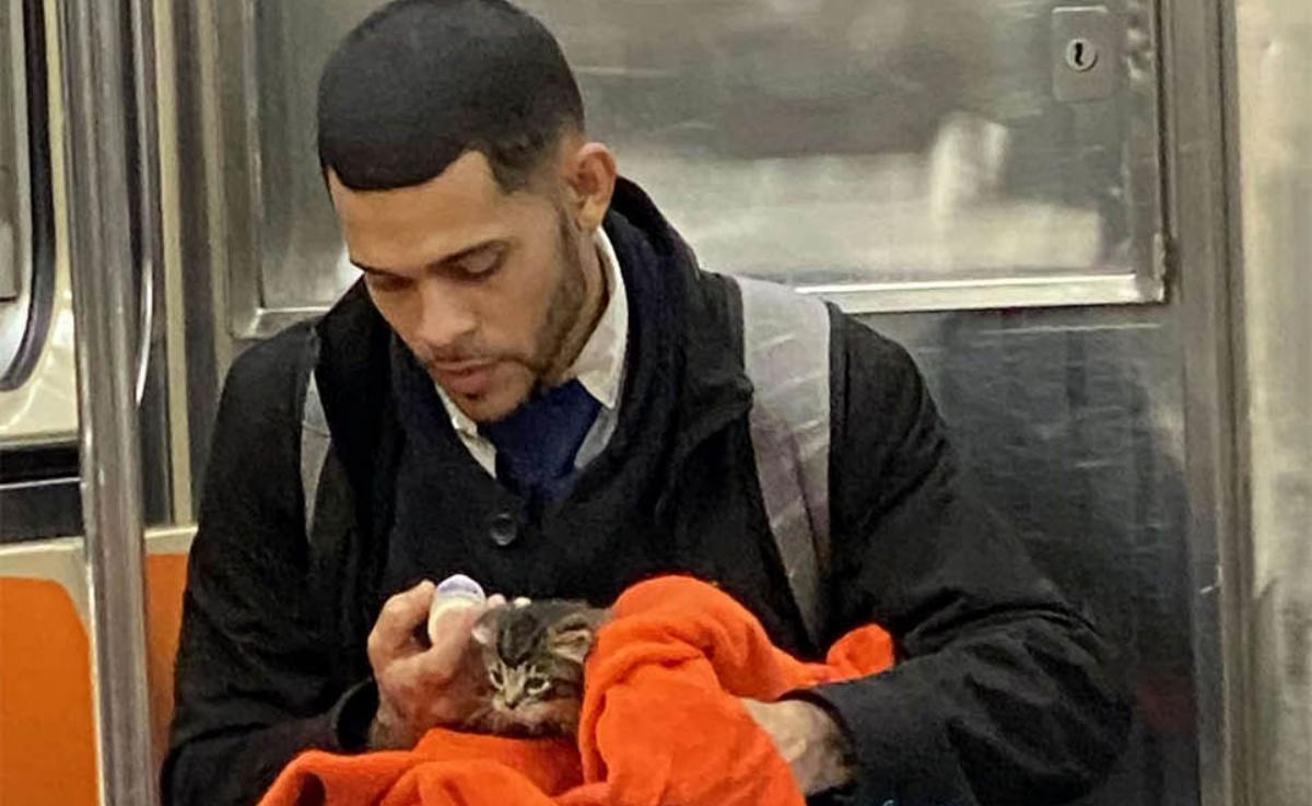 Il gattino sulla metropolitana