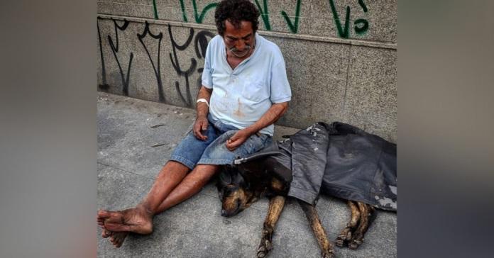 Sebastião e il suo cane