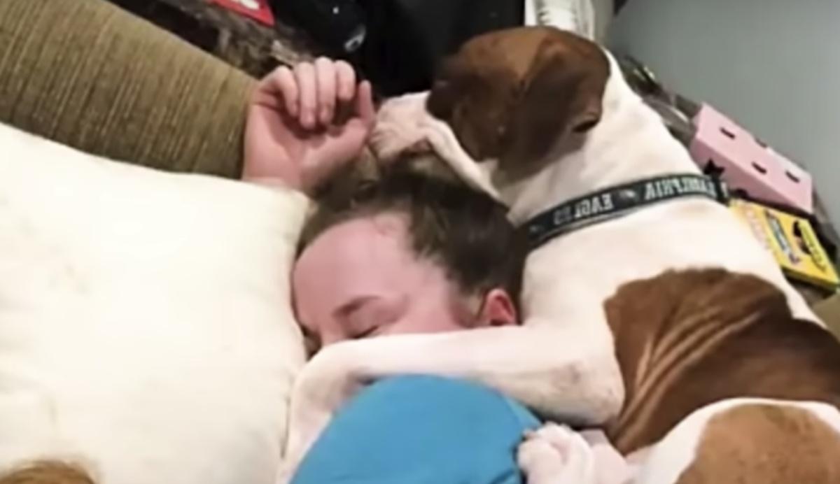 Carson, il cane abbandonato