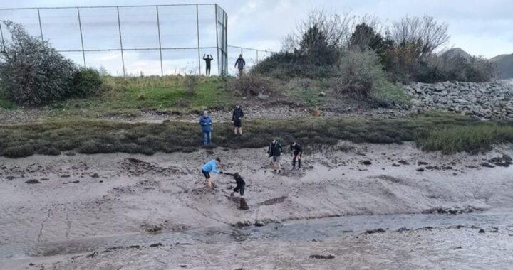 La brutta avventura del cagnolino Charlea