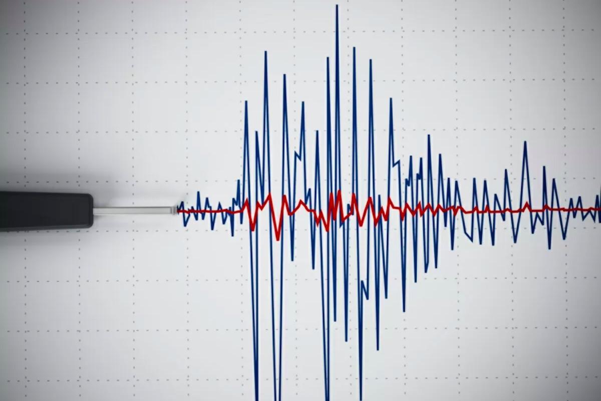 Terremoto rilevazioni