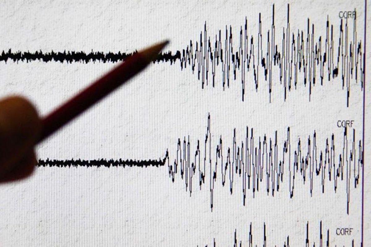 grafico scosse sismiche terremoto