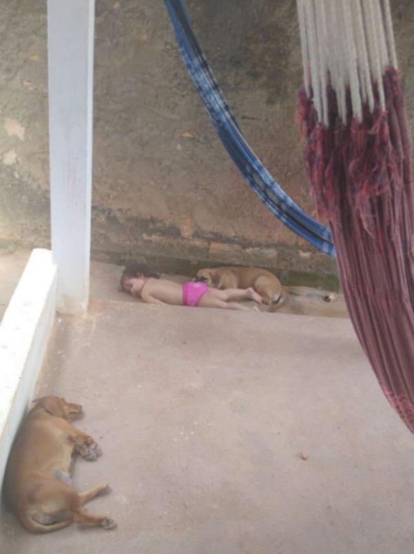 Annabell riposa con i cuccioli