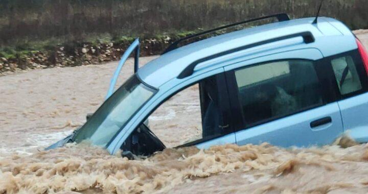 auto con cani dentro il fiume