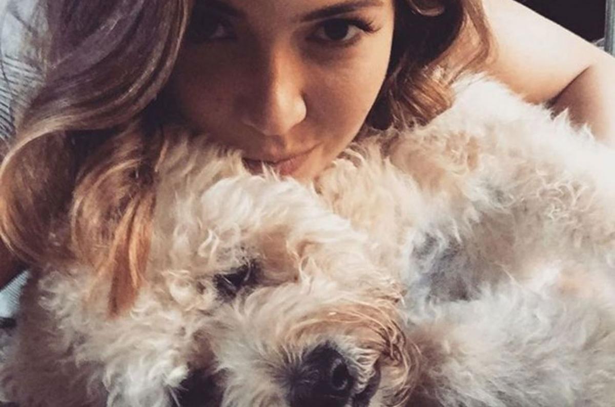 La cagnolina di Mandy Moore è morta