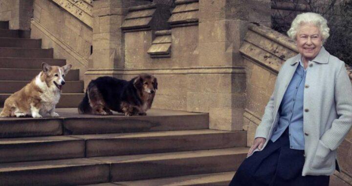 Lutto per la Regina Elisabetta II: addio a Vulcan