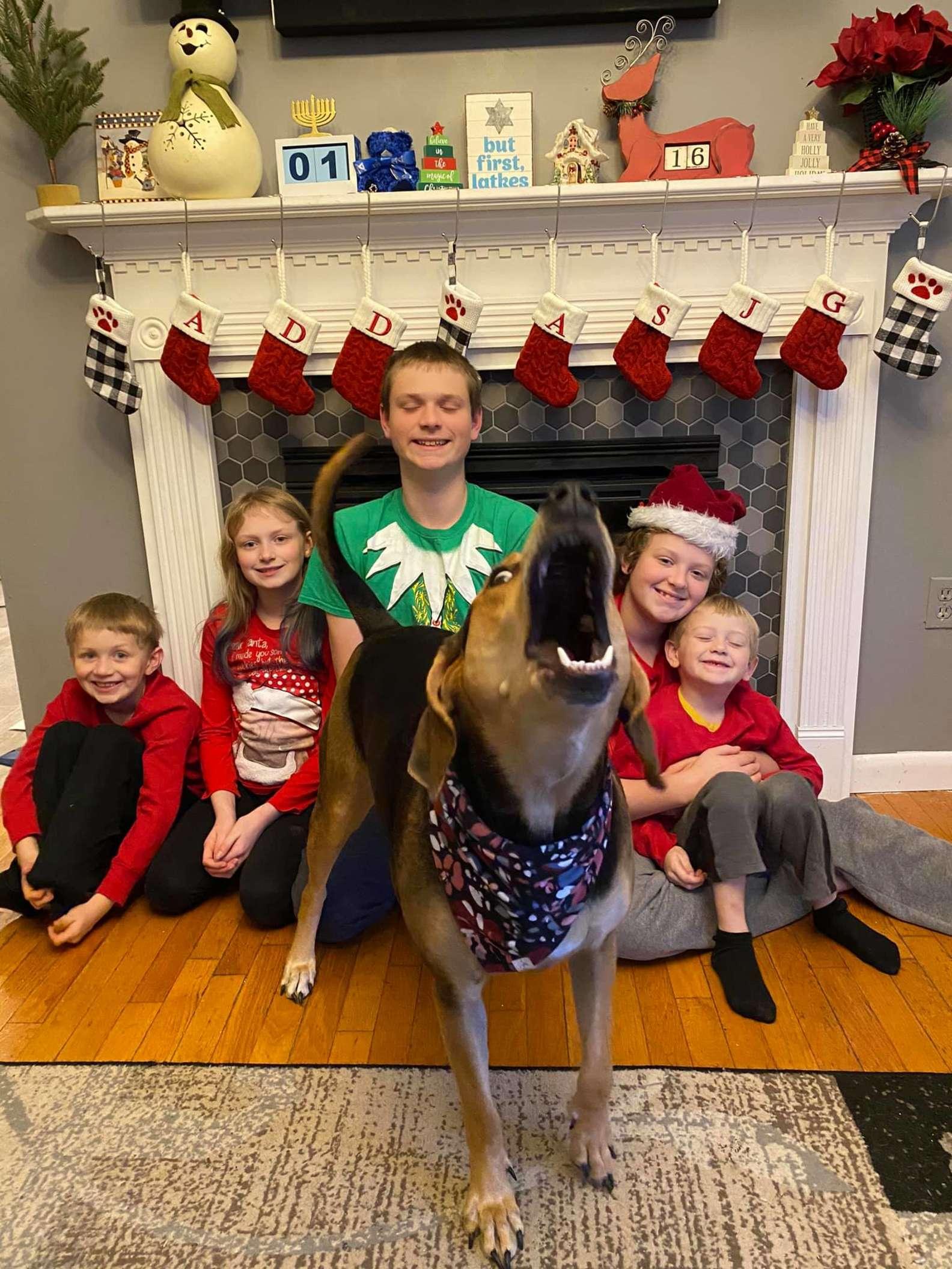 Penny  e le foto di Natale
