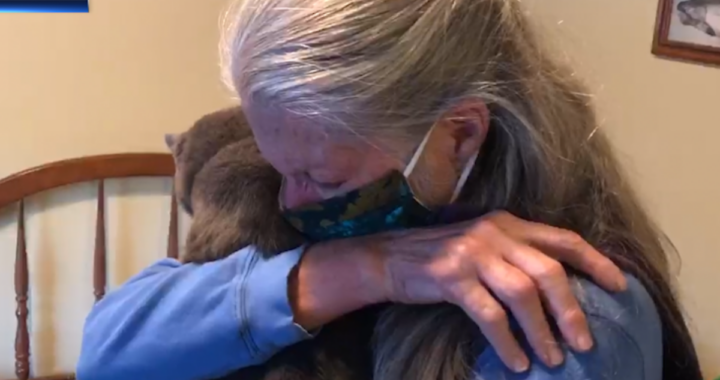 La riunione tra Schrodinger e la sua amica umana: era scomparso da 4 anni