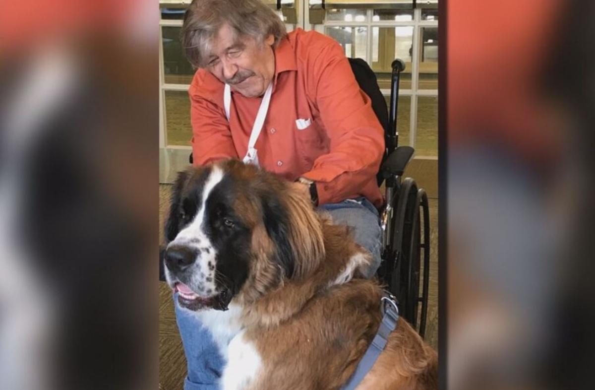 Sully, il cane di servizio rende felice un paziente
