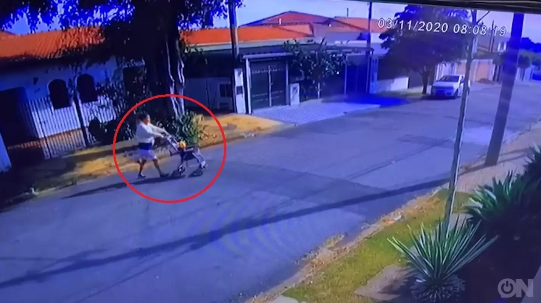 L'abbandono dei cani in strada