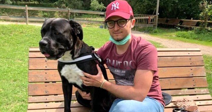 Multa di 400 euro mentre si trova con il suo cane: ecco quale sarebbe stata l'infrazione di questo ragazzo