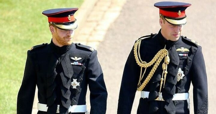 Meghan Markle ha aggravato la rivalità fra il Principe Harry e William?