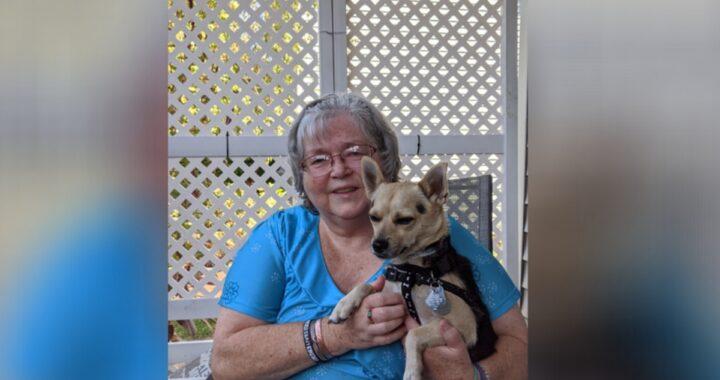 Buddy il cane abbandonato dopo la scoperta della malattia della sua amica umana