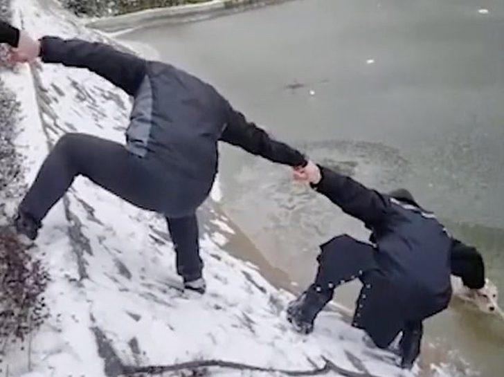 Il salvataggio del cane congelato