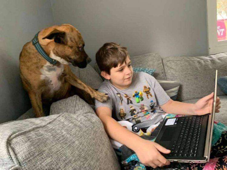 Jake e Owen insieme sul divano