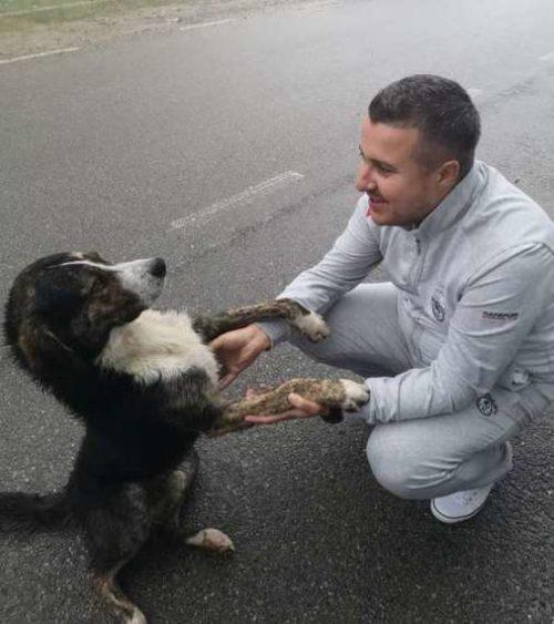 Cane adottato dopo il gesto eroico