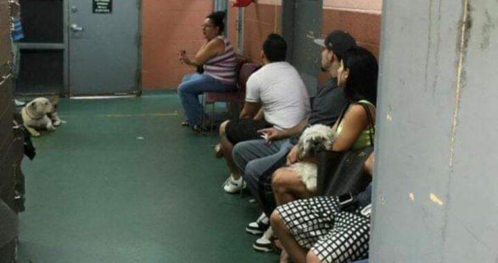La foto di un rifugio di Miami