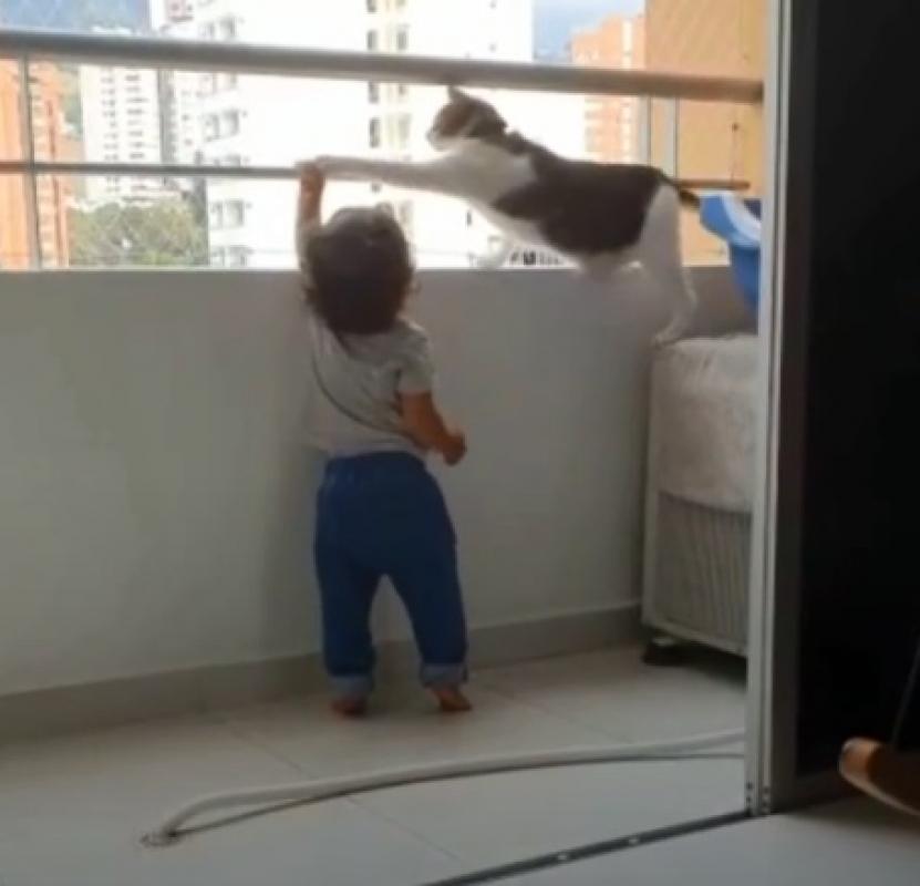 Il micio protegge Paulo