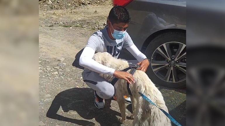 Raul Castro adotta il cane