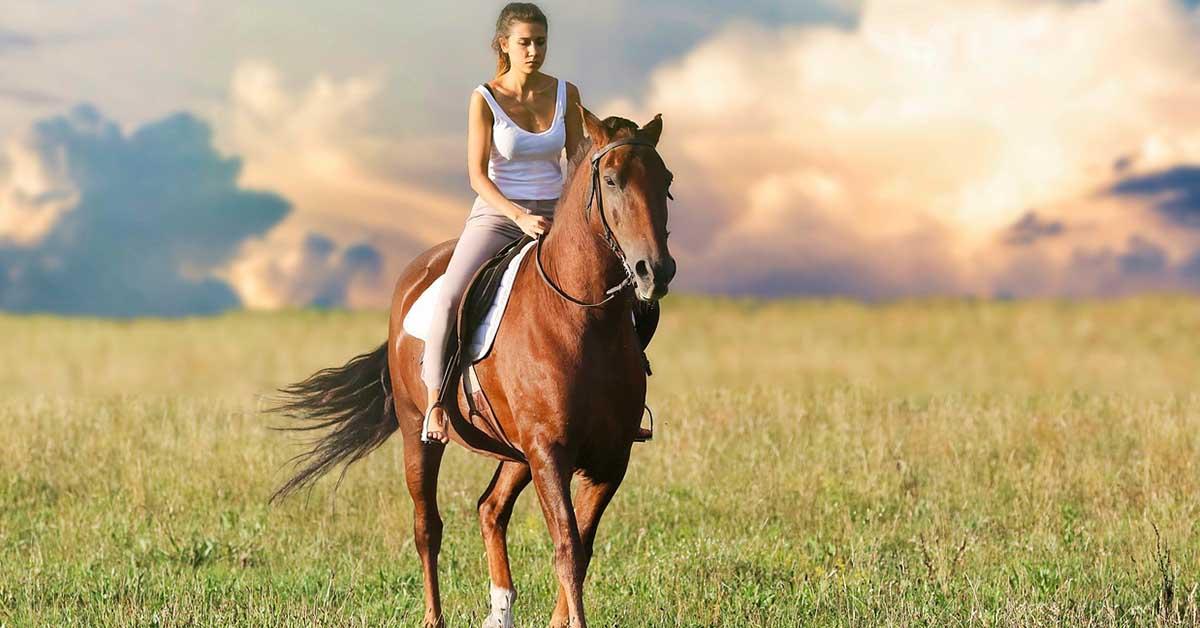 scegliere l'equitazione
