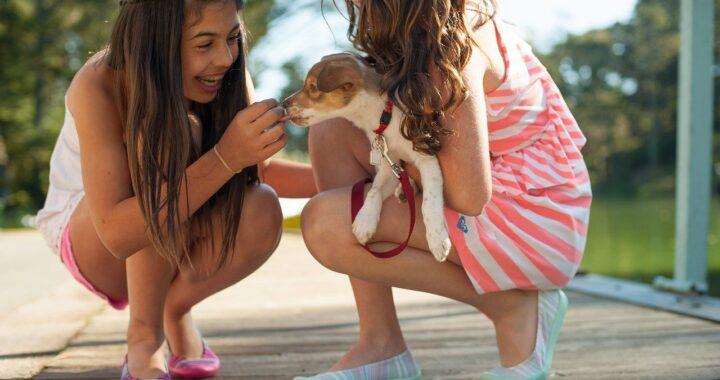 Sorelline vogliono il cane e scappano di casa per prenderne uno