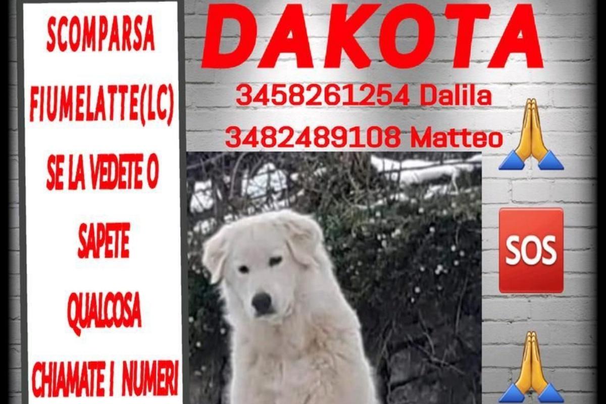 Il giallo della scomparsa di Dakota
