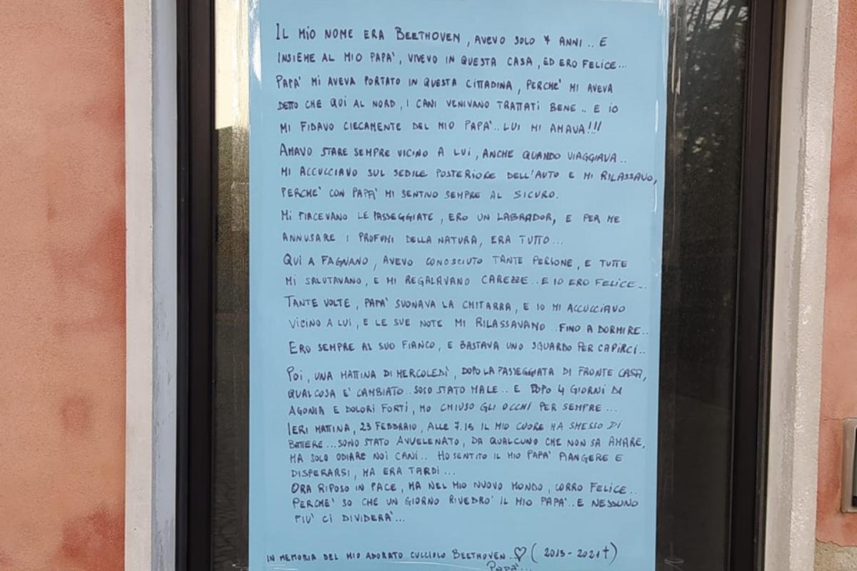 La struggente lettera di Max Piro per il suo Beethoven