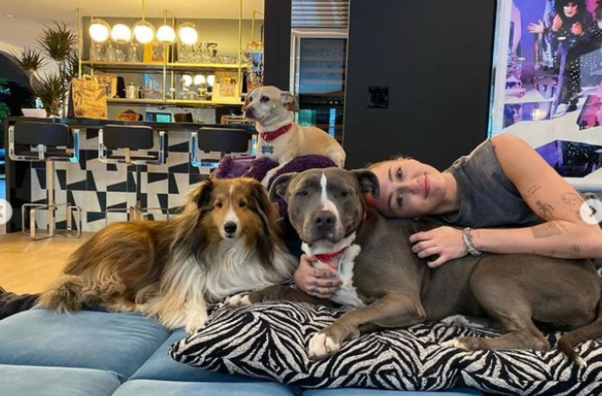 Miley Cyrus e il nuovo cagnolino
