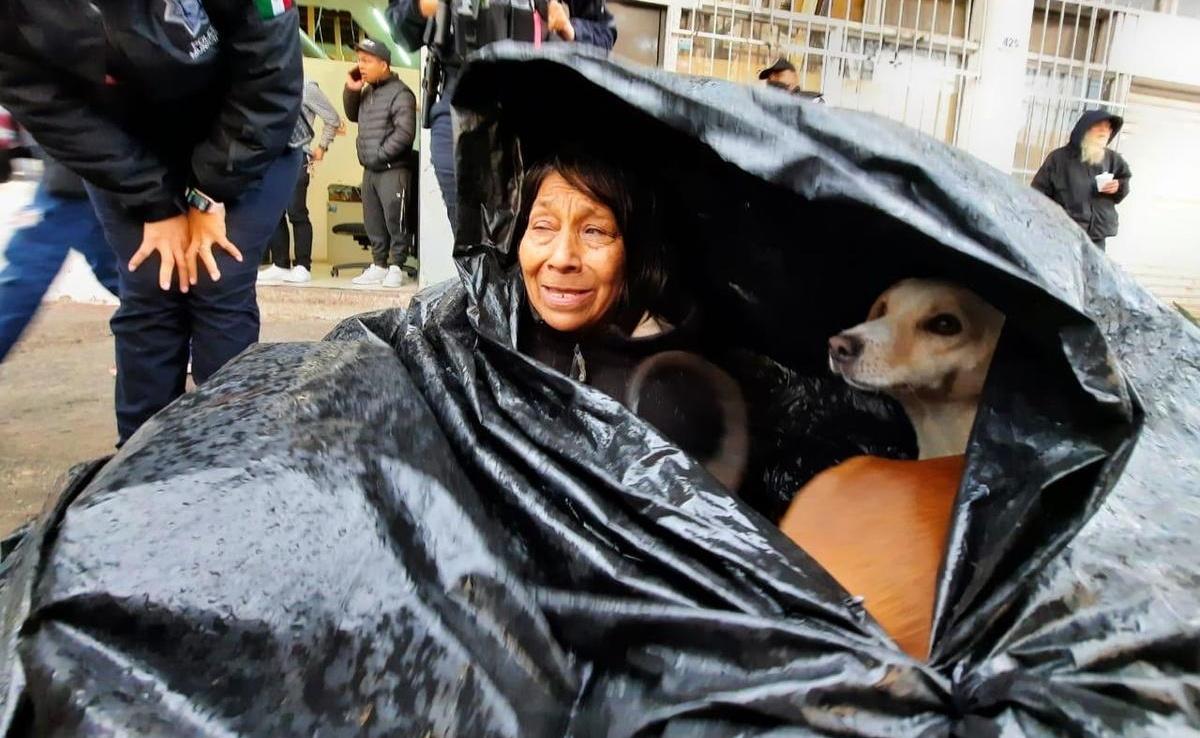 Soledad si rifiuta di lasciare i suoi cani
