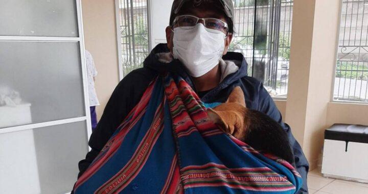 Ha percorso chilometri con quella cagnolina inerme in braccio per raggiungere la clinica e implorare i medici di aiutarlo