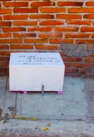 Messaggio sulla casa di Pinky
