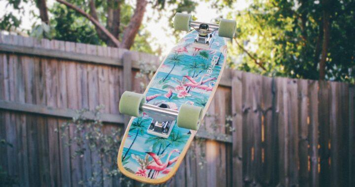 Cucciolo ama lo skateboard: la storia di Rowdy in un video