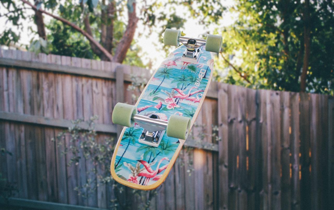 cucciolo ama lo skateboard