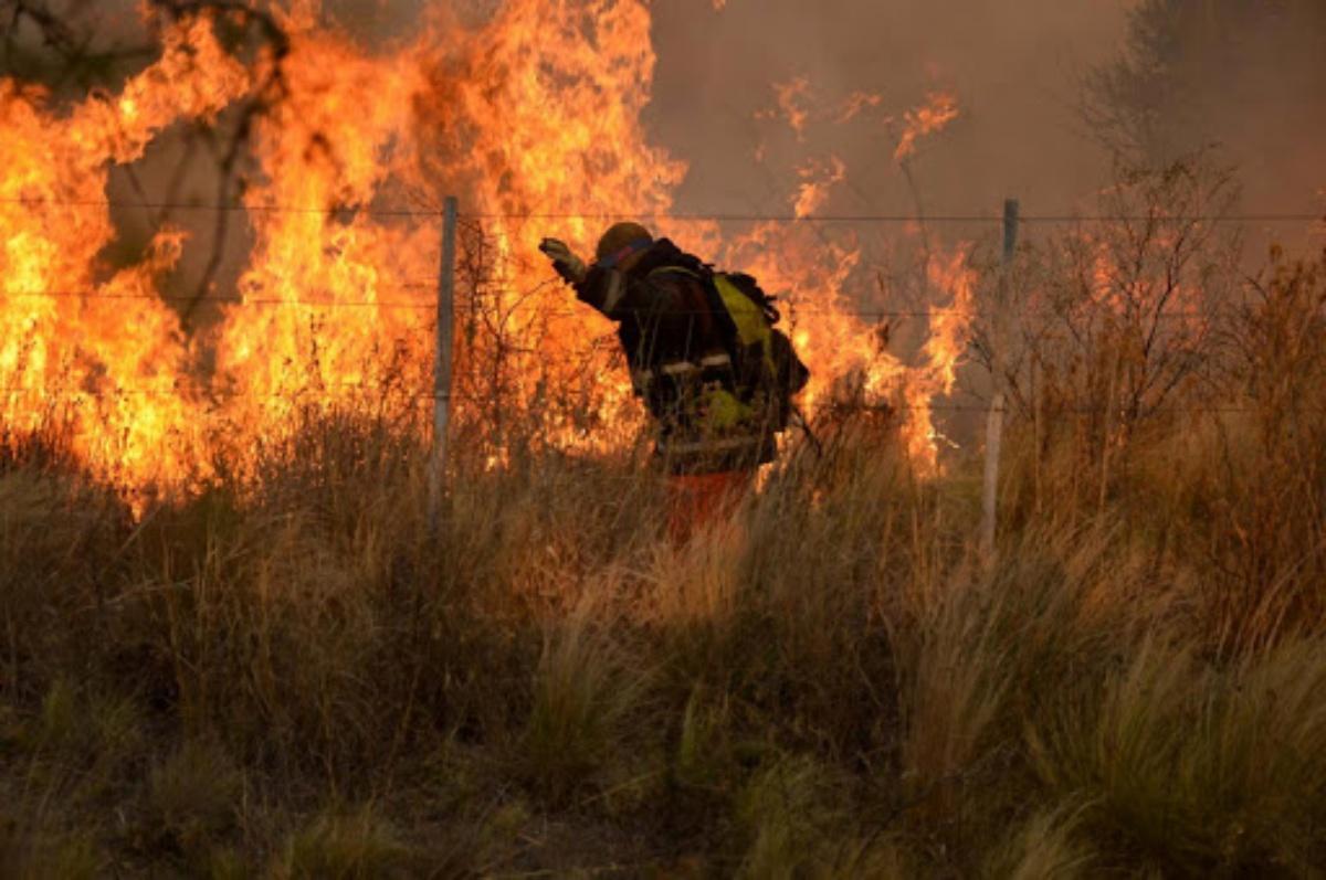La foto della donna pompiere