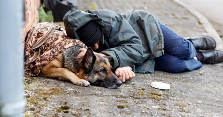 MODENA - Dopo l'allarme dei cittadini, le autorità hanno chiesto spiegazioni al senzatetto e alla hanno fine sequestrato il cane