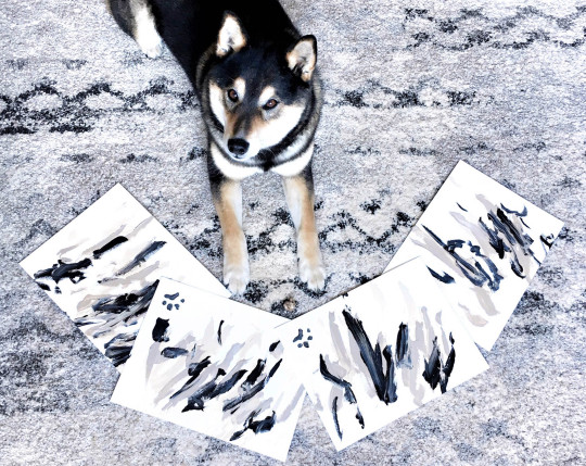 I  quadri del cane Hunter