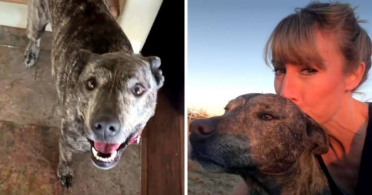 Laurette e la sua amicizia con la cucciola Georgia