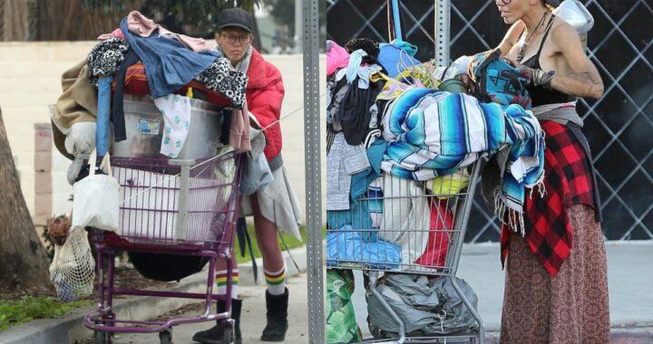 Loni Willison senzatetto