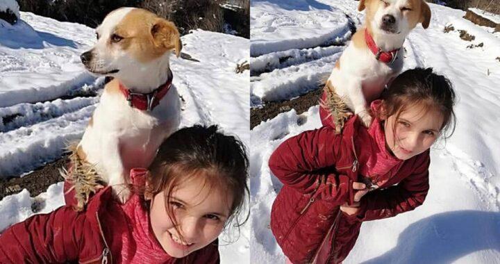 Il gesto che questa bambina di 8 anni ha fatto per il suo cagnolino, fa pensare che ci sia ancora speranza in questo mondo
