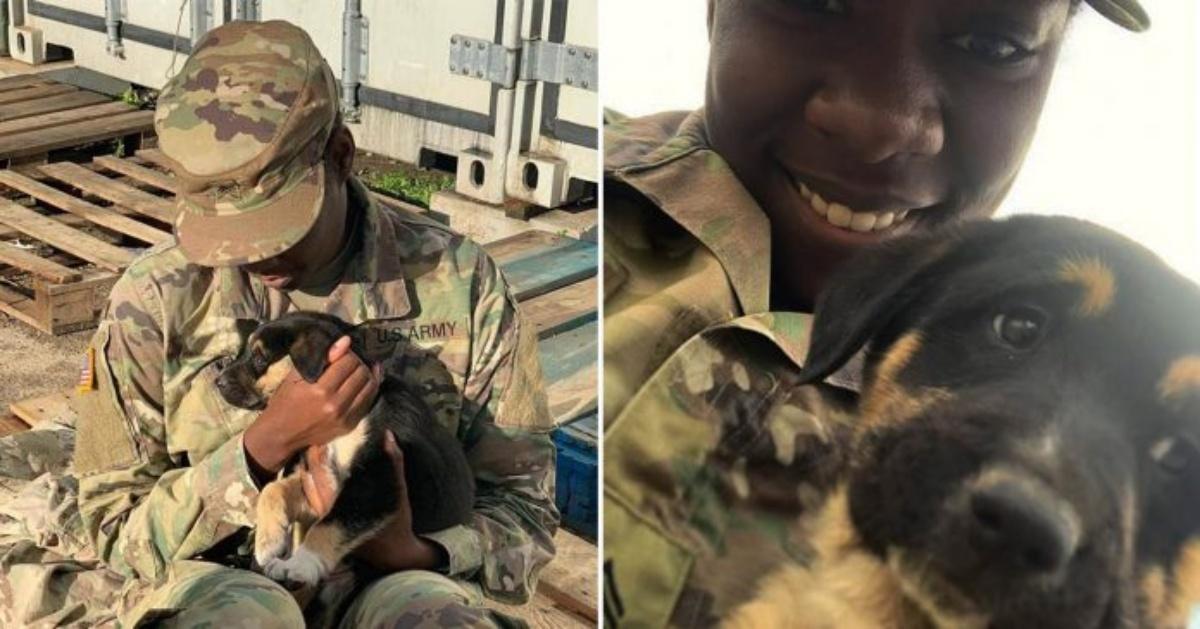 La storia di Char e PupPup