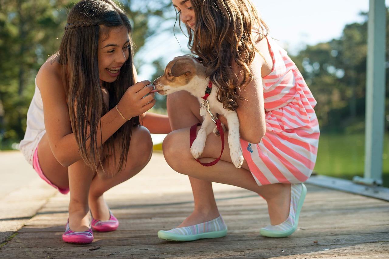 Bambina condivide lo spiedino con il cane randagio