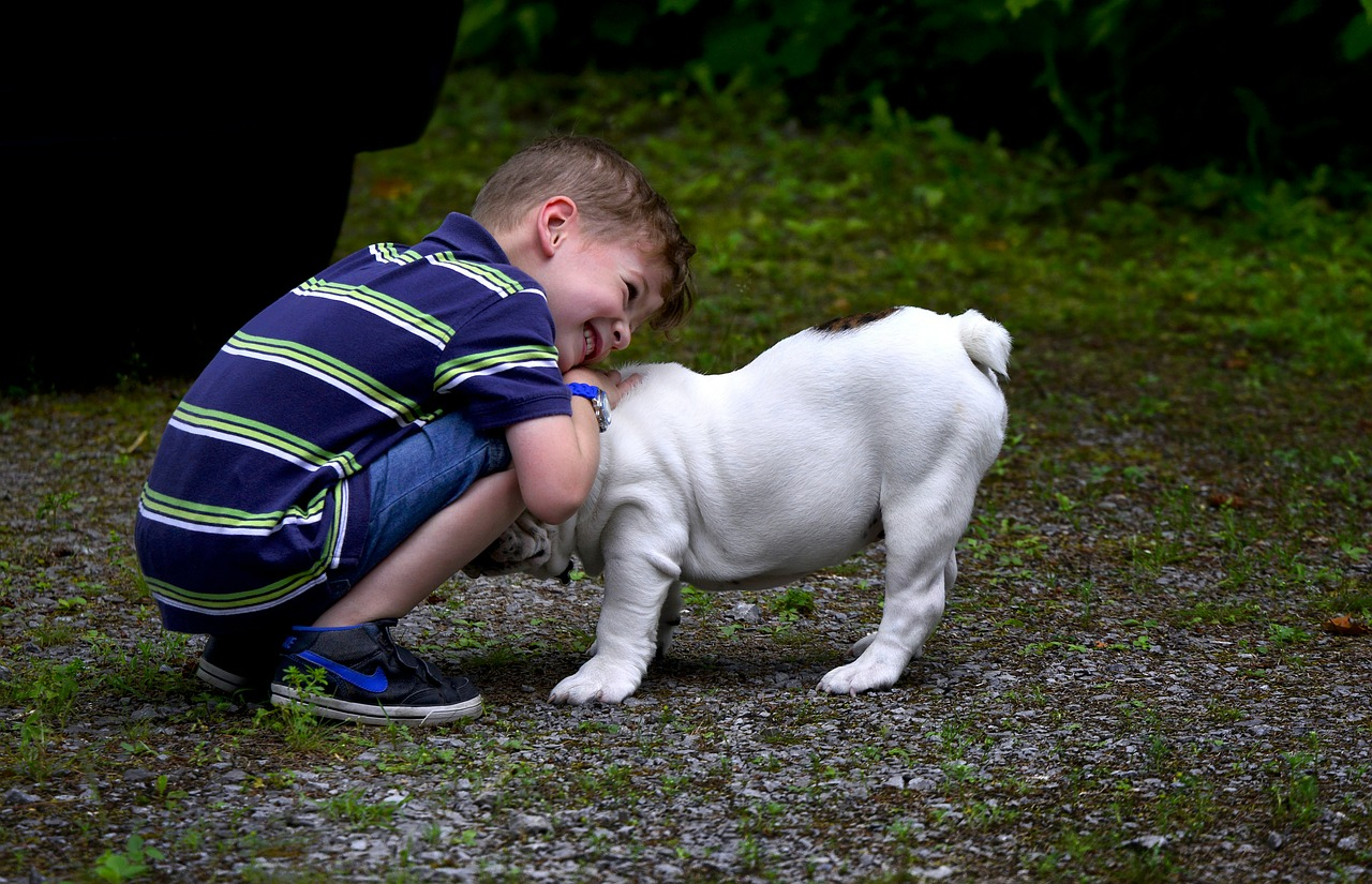 Bambino apre un negozio per animali