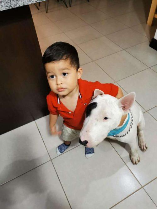 Bruno e il piccolo di casa