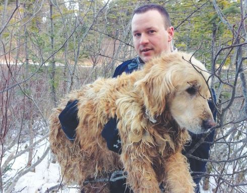 Cucciolo salvato nel ghiaccio