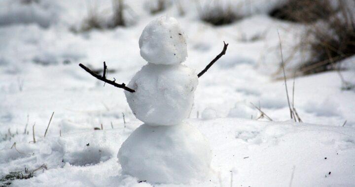 Cane vuole un abbraccio dal pupazzo di neve